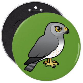 Northern Harrier male Pinback Button