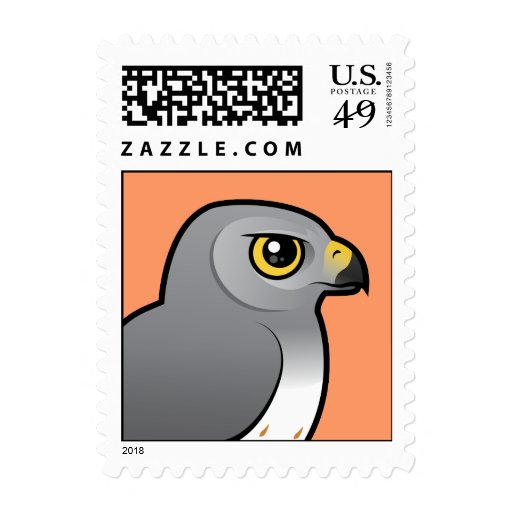Northern Harrier male Stamps