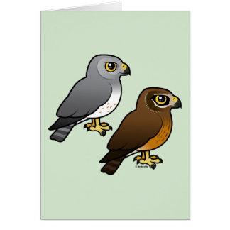 Northern Harrier pair Card