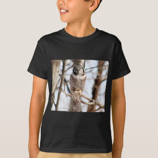 Northern Hawk Owl 3 T-Shirt