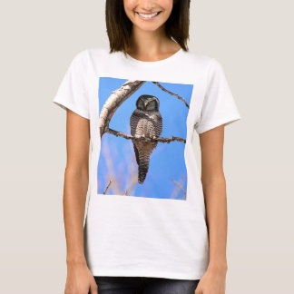 Northern Hawk Owl 4 T-Shirt