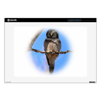 "Northern Hawk Owl 4A 15"" Laptop Decals"