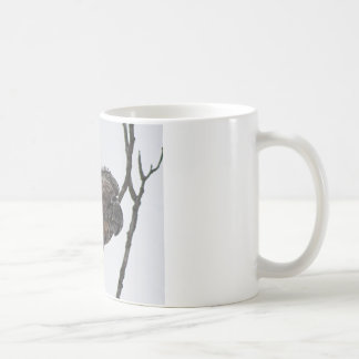 Northern Hawk Owl 6 Coffee Mug