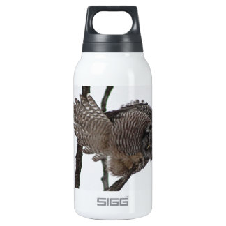 Northern Hawk Owl 6 Insulated Water Bottle