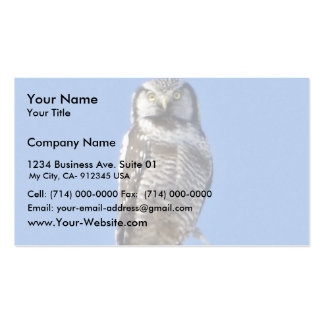 Northern Hawk Owl Double-Sided Standard Business Cards (Pack Of 100)