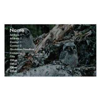 Northern Hawk Owl Chicks Double-Sided Standard Business Cards (Pack Of 100)