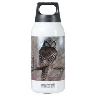 Northern Hawk Owl Insulated Water Bottle