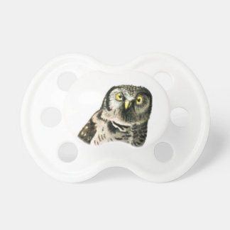 Northern Hawk Owl Pacifier