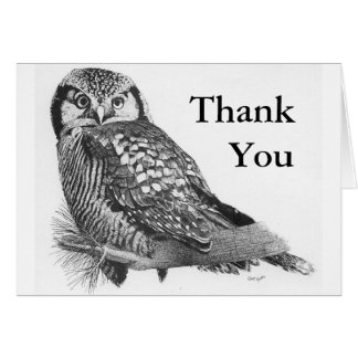 Northern Hawk Owl Thank You Card