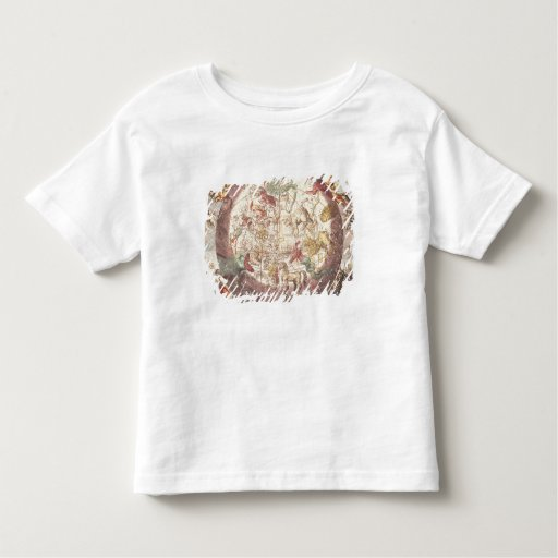 Northern  Hemisphere, from 'The Celestial Toddler T-shirt