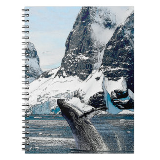 Northern Humpback Notebook