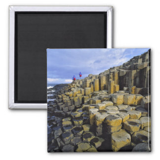 Northern Ireland, County Antrim, Giant's 2 Inch Square Magnet