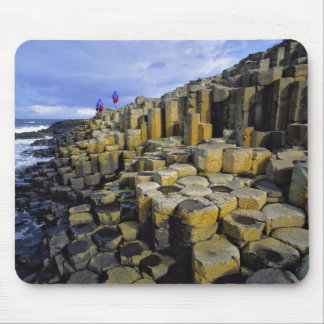 Northern Ireland, County Antrim, Giant's Mouse Pads