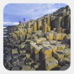 Northern Ireland, County Antrim, Giant's Square Sticker