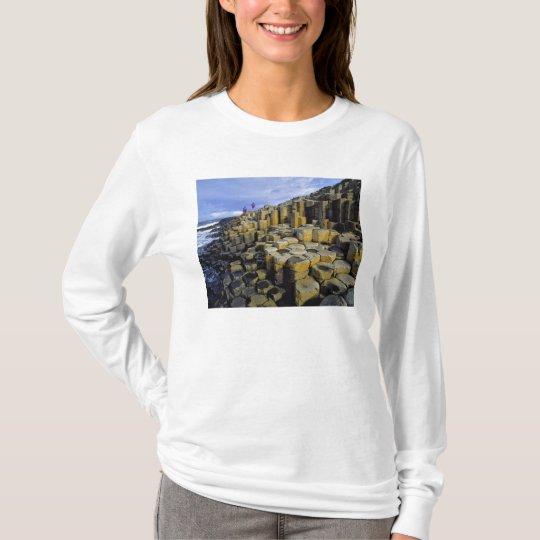 Northern Ireland, County Antrim, Giant's T-Shirt