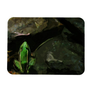 Northern Leopard Frog on Rocks Abstract Magnet