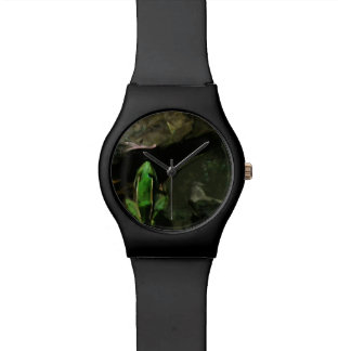 Northern Leopard Frog on Rocks Abstract Wristwatch