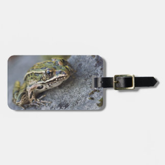 Northern Leopard frog, See-through Island, Bag Tag