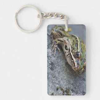 Northern Leopard frog, See-through Island, Acrylic Key Chain