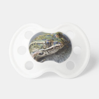 Northern Leopard frog, See-through Island, Pacifier