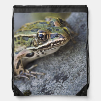 Northern Leopard frog, See-through Island, Drawstring Backpack