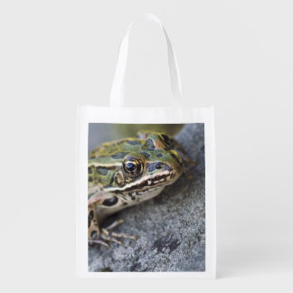 Northern Leopard frog, See-through Island, Grocery Bag