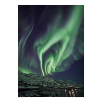 Northern Light Norway Poster