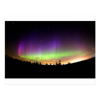Northern Lights Alaska Sky Night Postcard