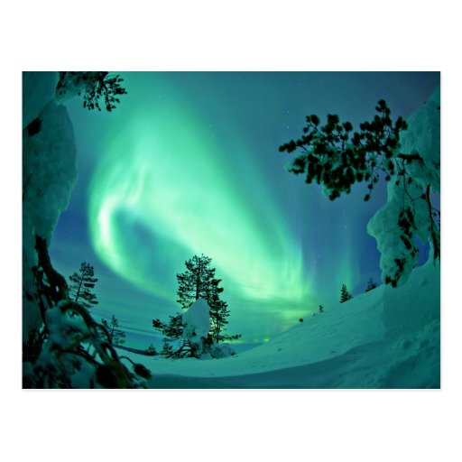 Northern Lights at Winter Postcards