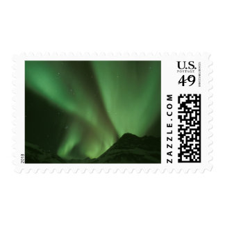 Northern lights Aurora borealis on foothills of Stamps