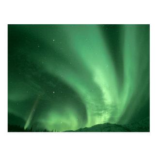 Northern lights, Aurora borealis, over foothills Postcard