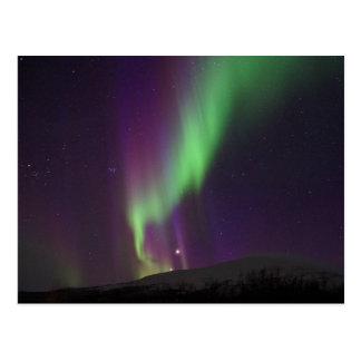 Northern Lights in Lappland, Sweden Postcard