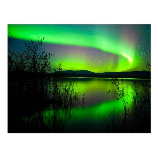 Northern lights mirrored on lake postcards