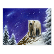 Northern Lights polar bear postcard