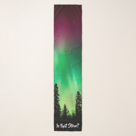 Northern Lights Scarf   Is That Steve?