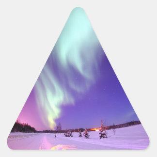 Northern Lights Shine in Alaskan Sky Sticker