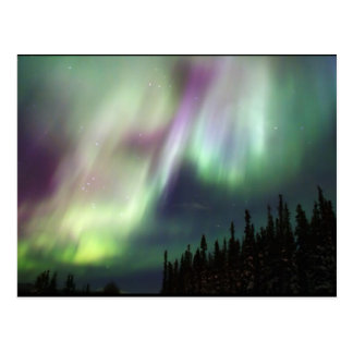 Northern Lights Sky Peace Love Winter Photograph Postcard