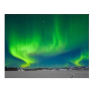 Northern Lights Swirls Postcard
