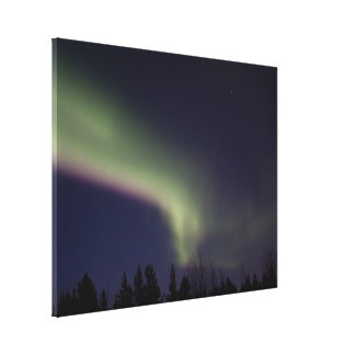 Northern Lights with a Streak of Purple Canvas Print