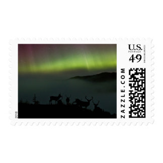 Northern Lights with Stags on the Hillside Postage