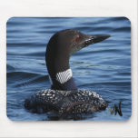 Northern Loon Mouse Pad
