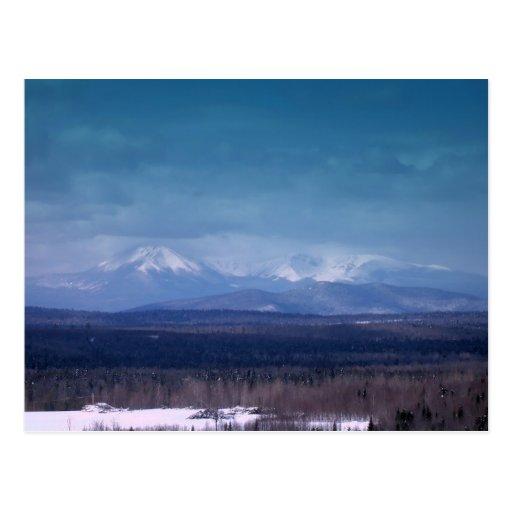 Northern Maine 36 Postcard