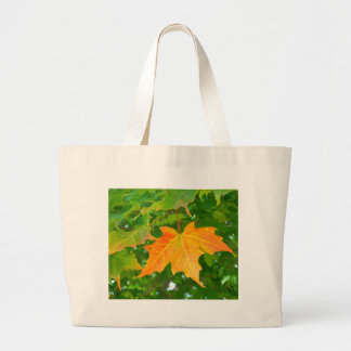 Northern Maine Autumn 022 Bag