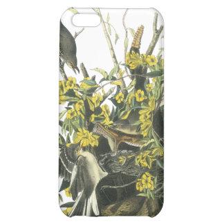 Northern Mocking Bird, John Audubon Case For iPhone 5C