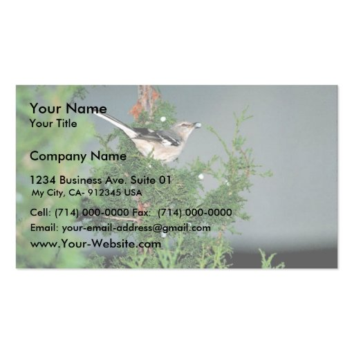 Northern mockingbird Double-Sided standard business cards (Pack of 100)