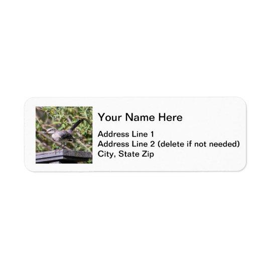 Northern Mockingbird Label