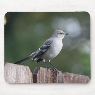 Northern Mockingbird Mousepads