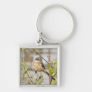 Northern Mockingbird Silver-Colored Square Keychain