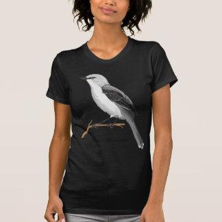 NORTHERN MOCKINGBIRD TEE SHIRTS