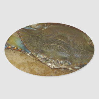 Northern Neck Crab Oval Stickers